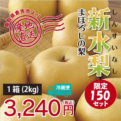 福実園の新水梨2kg