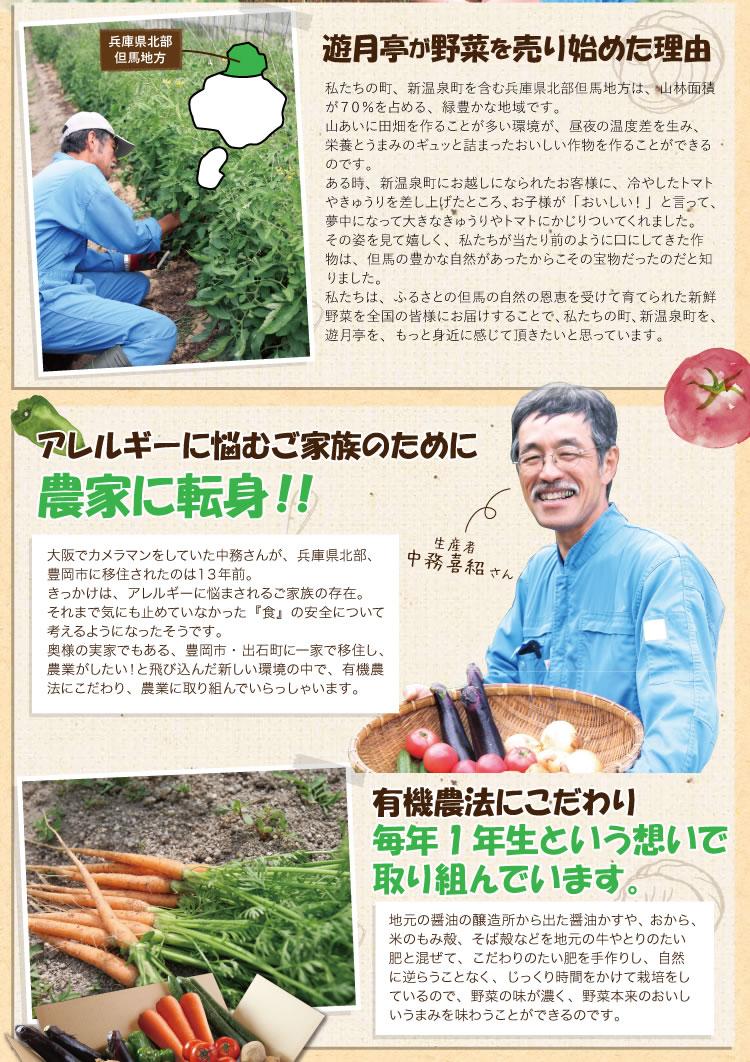 natuyasai_03