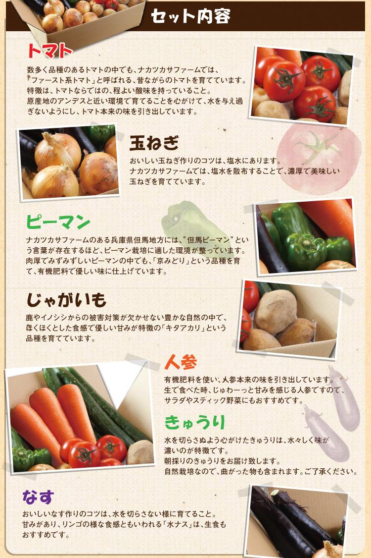 natuyasai_04