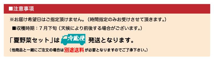 natuyasai_06